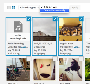 delete-bulk-images