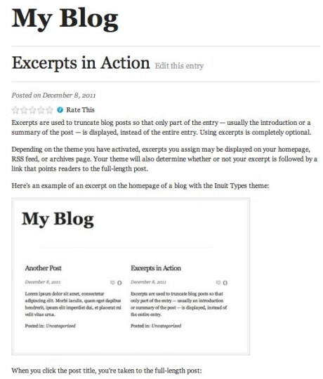 note that the excerpt is only visible on the sites main blog page where all posts are shown but that excerpt text is not visible on the blog post itself