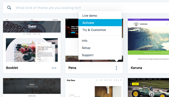 Themes — Support — WordPress.com