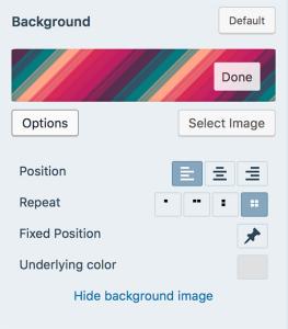 Custom wordpress site best options