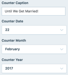 Some themes like Wedding come with extra customization options