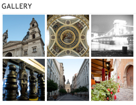 Example of a Gallery Widget