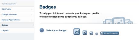 instagram_badge_options