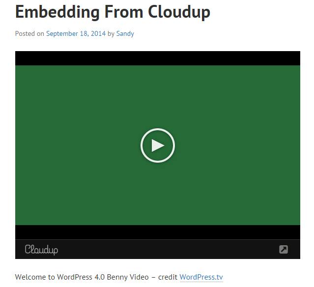 single-video-result
