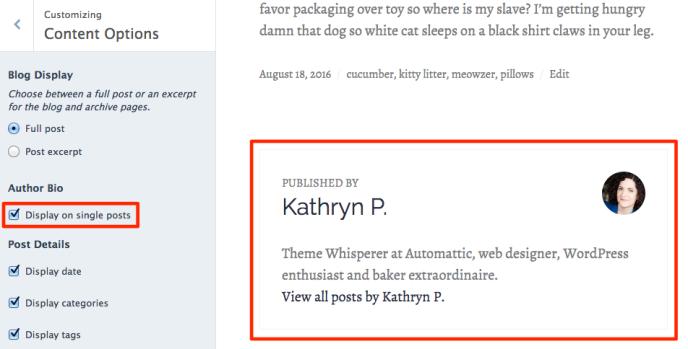author bio screenshot