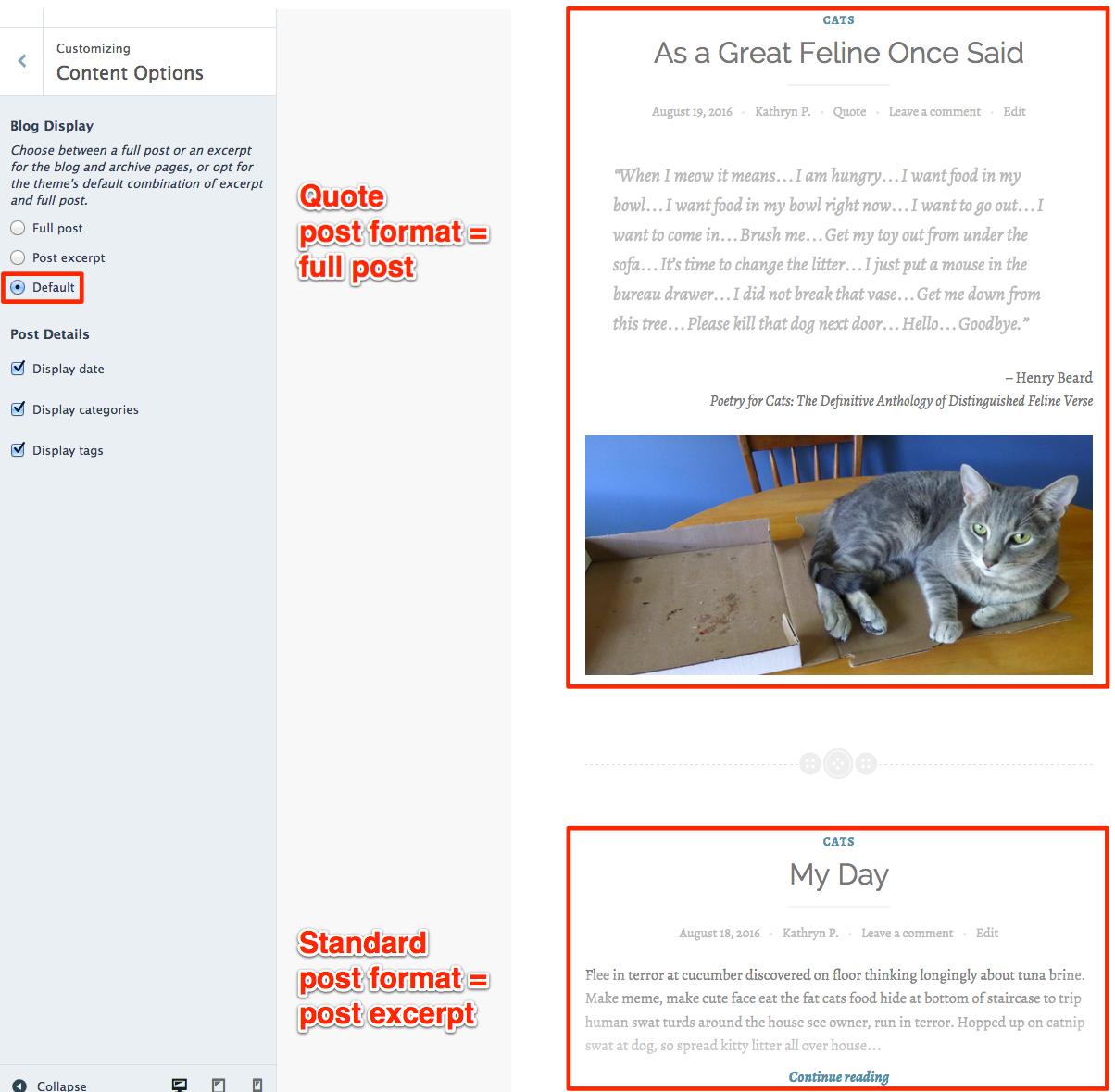 Default blog display option