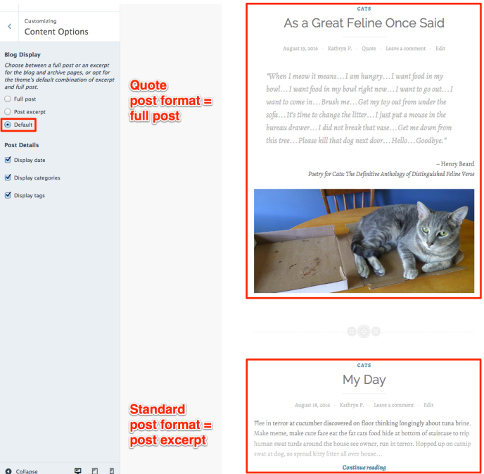Default blog display option