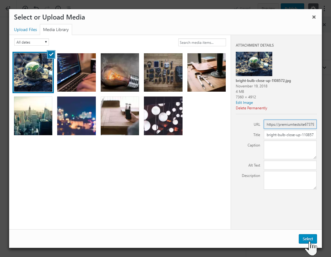 Upload or select an image from your Media Library, add image information, then press Select.