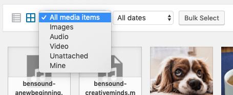 Media Library - WP Admin - Filter