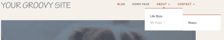 Page Settings - Menu
