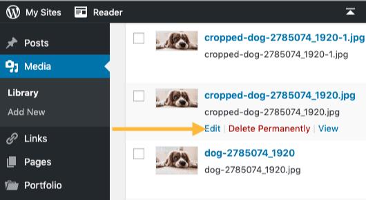 Edit Image in WP Admin