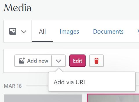 Image of Add new Media via URL option
