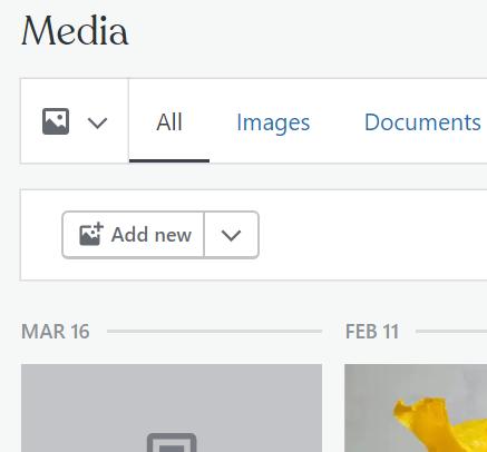 Add new Media button