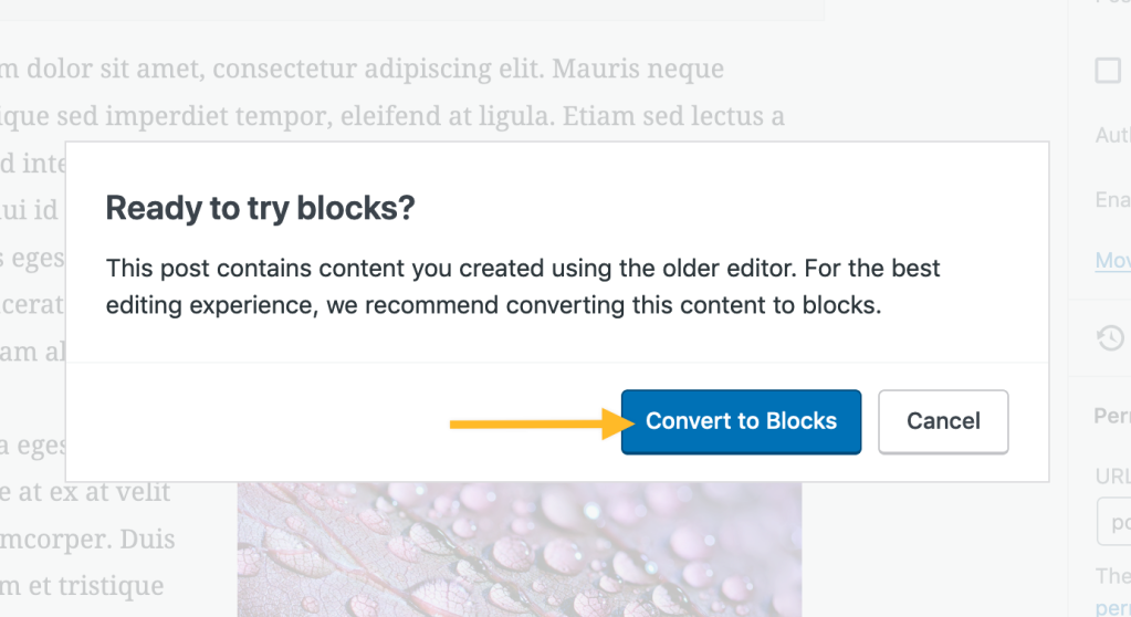"Screenshot: A pop-up with the text ""Ready to try blocks? This post contains content you created using the older editor. For the best editing experience we recommend converting this content to blocks."" Below this text are two buttons. The left button is 'Convert to blocks' and the right button is 'Cancel'."