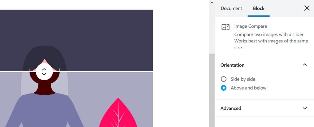 Image Compare block settings