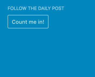 Follow Blog widget view for logged in users