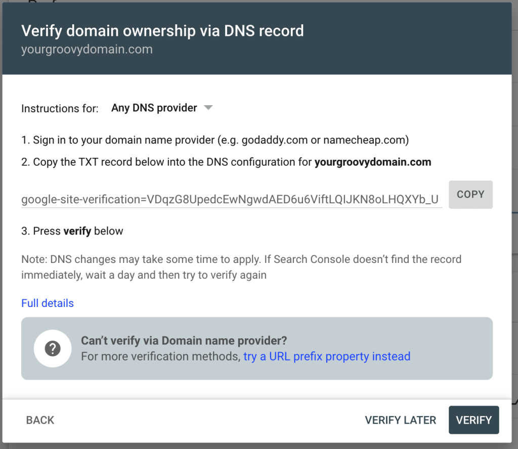"""the """"Verify domain ownership via DNS record"""" screen displaying an example TXT record."""